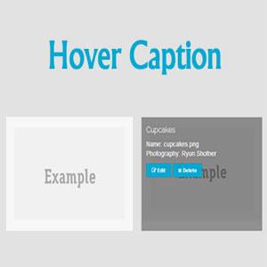 کپشن های زیبا برای تصاویر در وردپرس با Image Caption Hover