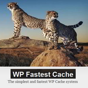wpFastestCachePremium